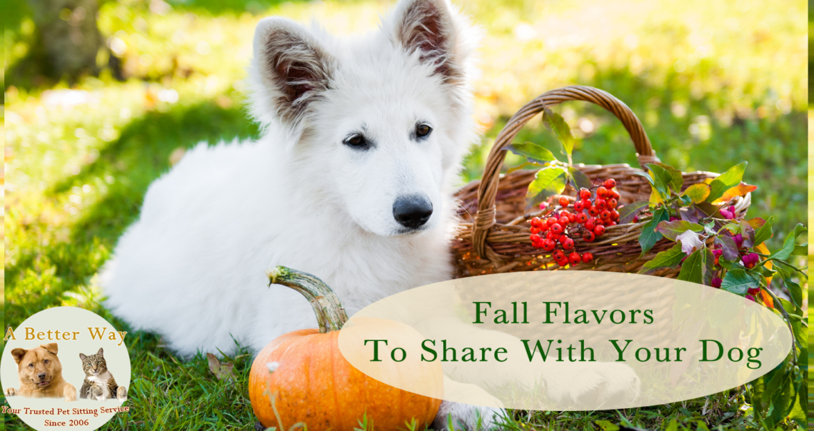 Fall Flavors To Share With Your Dog